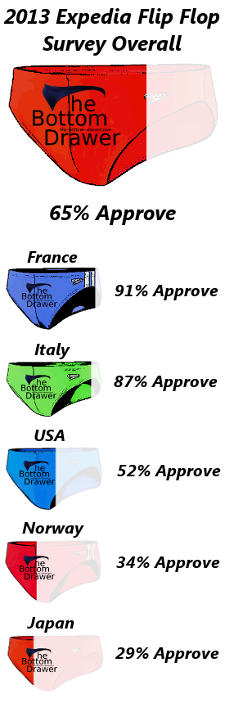 Expedia 2013 Survey Chart